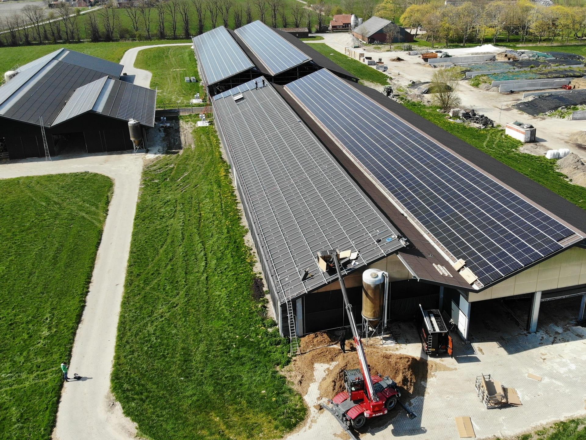onderconstuctie op dak koeienstal